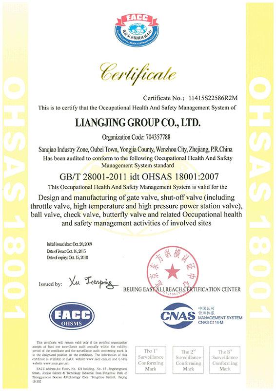 OHSAS18001-2007ENG