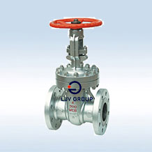 API603  Stainless Steel Valve